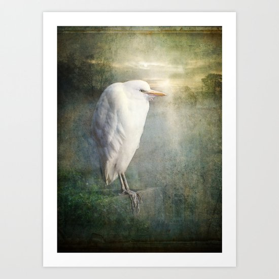 The White Egret Art Print