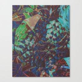 JÜÏC Canvas Print