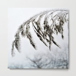 frozen grass in blck and white Metal Print