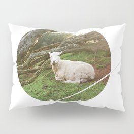 Lamb in the Grass  Pillow Sham