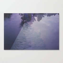 The meeting Canvas Print