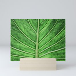 leaf Mini Art Print