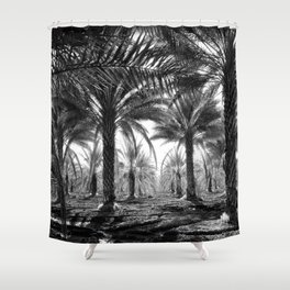 Vintage Palms Trees : Coachela Valley California 1937 Shower Curtain