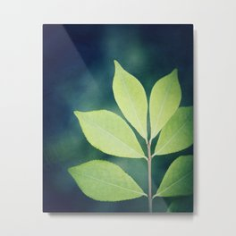 Leaves Nature Photography, Green Leaf Navy Blue Branch Photography Metal Print