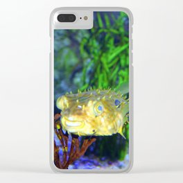 Striped Burrfish Clear iPhone Case