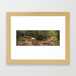 Forest Panorama Framed Art Print
