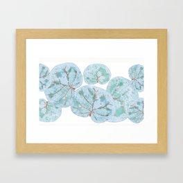 Sea Grape Tropical Leaves Framed Art Print