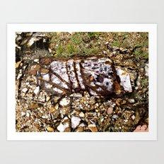 HeadlandRock5 Art Print