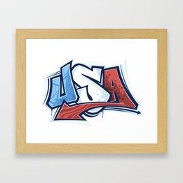 USA in Graffiti Framed Art Print