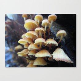 Mushroom Tower Canvas Print