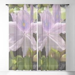Purple Water Hyacinth in Bloom Sheer Curtain