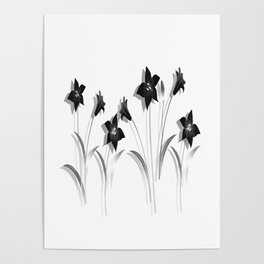 Schwarze Lilien Poster