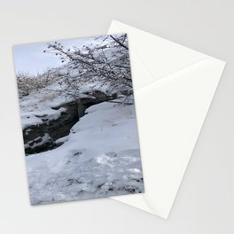 Homestead Crater Stationery Cards