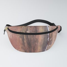 Colorful textures in old wood Fanny Pack
