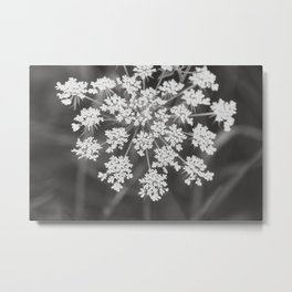 Wildflowers in the Morning Metal Print