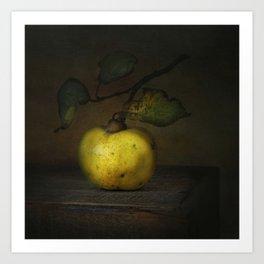 autumn fruit ( quince ) Art Print