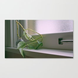 Window Blues Canvas Print