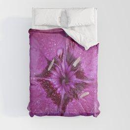 Square Dianthus Comforters