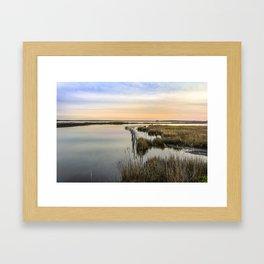 Wildgrass Along the Chesapeake Bay Framed Art Print