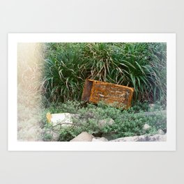 Lost Treasure Art Print