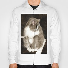 Winston the Cat Hoody