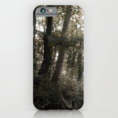 Just a walk Slim Case iPhone 6s