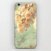 postcard iPhone & iPod Skins featuring Postcard by AlejandraClick