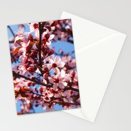 Beautiful blooming plum tree close up Stationery Cards