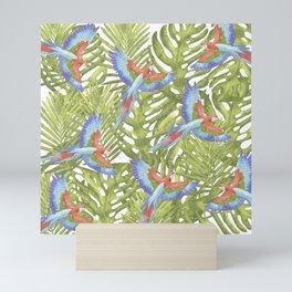 Macaw Mini Art Print