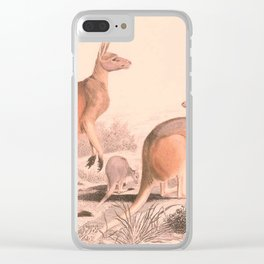 Vintage Kangaroo Family Illustration (1849) Clear iPhone Case