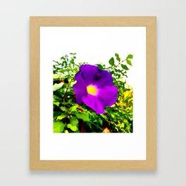 The Purple Flower Framed Art Print