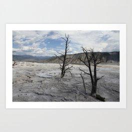 Mammoth Hot Spring  Terrace Art Print