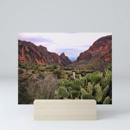 The Window Trail Mini Art Print