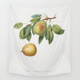 Pear (Pyrus butyra) from Pomona Italiana (1817 - 1839) by Giorgio Gallesio (1772-1839) Wall Tapestry