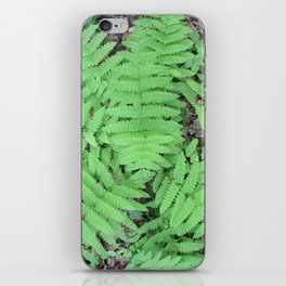 Fern From Above iPhone Skin