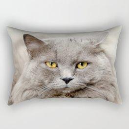 Funny Angry Cat Rectangular Pillow
