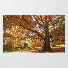 Autumn in the Park Rug