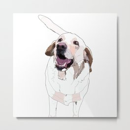 Labrador Metal Print