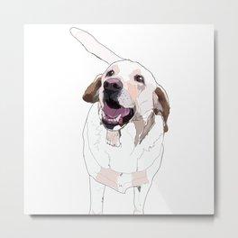 Labrador Dog (white) Metal Print