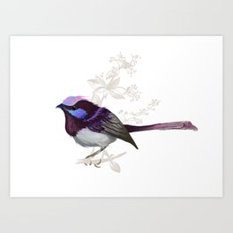 Forest Wren Bird Art Print