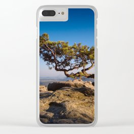 Crooked Tree in Elbe Sandstone Mountains Clear iPhone Case