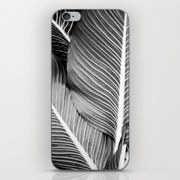 Tropical Leaf iPhone Skin