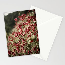 Oregon (red) Stationery Cards