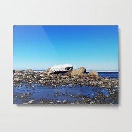 Stranded Iceberg Metal Print