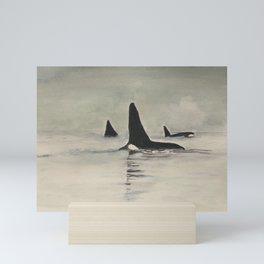 Salish Sea Transients Mini Art Print