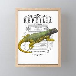 Reptilia Framed Mini Art Print