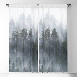 Redwood National Park Forest Fog Blackout Curtain