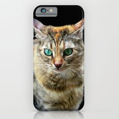 Cat with Turquoise Eyes Slim Case iPhone 6