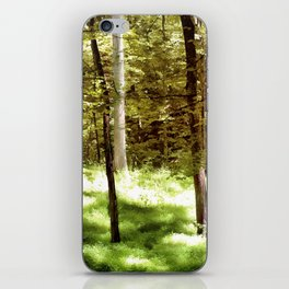 Forest Through the Trees iPhone Skin