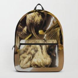 Short encounter Backpack